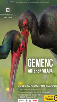 gemenc_02