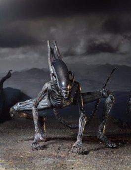 neca-alien-covenant-xenomorph