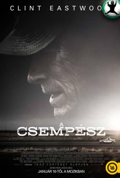 filmplakatok_a_csempesz_01