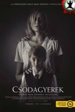 filmplakatok_acsodagyerek_03