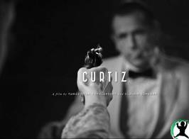gallery_curtiz_03