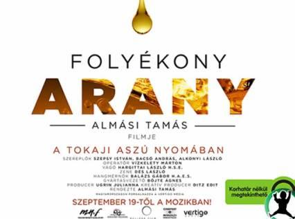 gallery_folyekony_arany_01