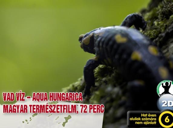 cover_vad_viz_aqua_hungarica_01