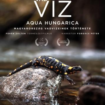 vad-viz-poster-b1-6v-web